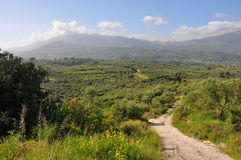 Landscape on crete, greece Stock Image