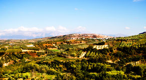 Landscape On Crete With Olive Trees In Greece Stock Images