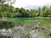 Plivice lake in Croatia. Landscape on the go in Croatia Royalty Free Stock Image