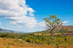 Landscape in Cuba Royalty Free Stock Image