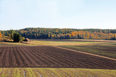 Landscape of Cultivated Autumn Fields Stock Image