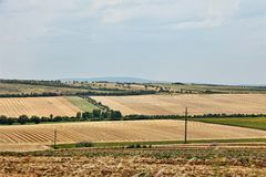 Landscape of cultivated fields Stock Photo