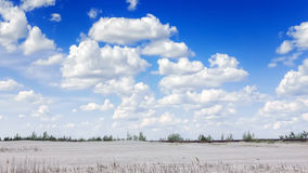Landscape with cumulus white clouds Stock Photos