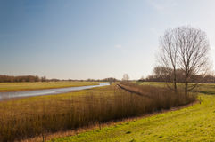 Landscape with a curved creek Stock Photo