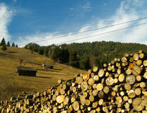 Landscape with cut wood and house Royalty Free Stock Photos
