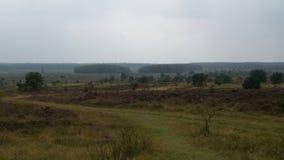 Landscape - Cuxhaven Stock Image