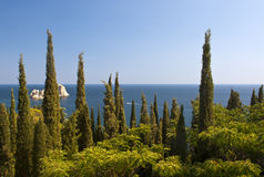 Landscape with cypress grove in the foreground. Landscape with cypress grove. Crimea, Ukaraine Royalty Free Stock Photo