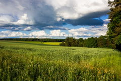 Landscape Czech countryside. Summer landscape in Czech countryside royalty free stock images