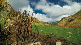 Landscape damaged by the Thomas Fire in California mountains in timelapse 4K. Landscape damaged by the Thomas Fire in California mountains stock video footage