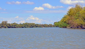 Landscape in the Danube Delta Stock Photo