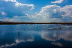Landscape in Danube Delta stock photo