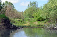 Landscape in the Danube Delta Royalty Free Stock Images