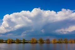 Landscape in Danube Delta Royalty Free Stock Image