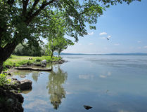 Landscape of the Danube River Stock Photography