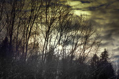 Landscape dark atmosphere Stock Image
