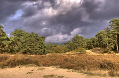Landscape with dark clouds. Dark clouds over woods landscape in national park Veluwe, The Netherlands stock photos