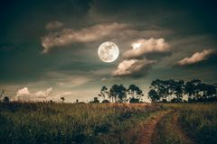 Landscape of dark night sky with clouds. Beautiful bright full moon above wilderness area in forest. Country road through fields of the countryside at stock photography