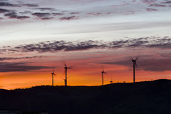 Landscape of dawn with windmills at horizon Royalty Free Stock Images