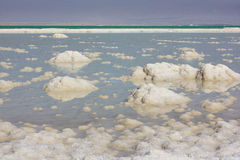 Landscape of the Dead Sea, Israel Royalty Free Stock Photo