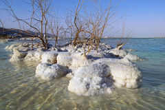 Landscape of the Dead Sea, Israel Royalty Free Stock Photography