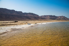 Landscape with dead sea Royalty Free Stock Photos