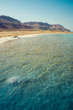 Landscape with dead sea Royalty Free Stock Image