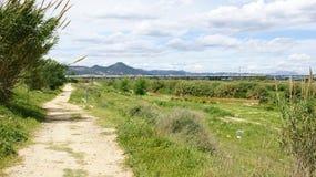 Landscape Delta del Llobregat Stock Images
