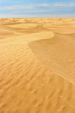 Landscape of desert Royalty Free Stock Images