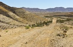 Landscape of the desert in Israel Stock Photos