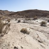 Landscape of the desert in Israel Royalty Free Stock Photos