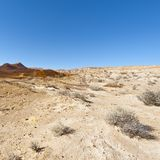 Landscape of the desert in Israel Royalty Free Stock Photo