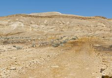 Landscape of the desert in Israel Royalty Free Stock Images