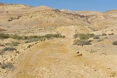 Landscape of the desert in Israel Stock Photography