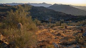 Landscape of desert and mountains near Phoenix Arizona royalty free stock photography
