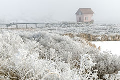 Landscape with a deserted cabin in the fog Stock Images