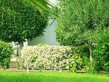 Landscape design Royalty Free Stock Photos