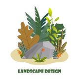 Landscape design composition with plant and stones. Cute floral composition for greeting card, banner, flyer, app, website on. Ecological, botanic, landscape royalty free illustration