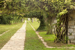 The landscape design Royalty Free Stock Photo