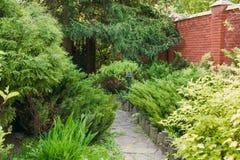 Landscape design, evergreen fir trees and shrubs Stock Photography