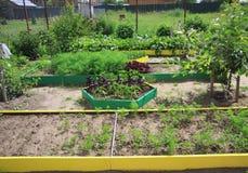 Landscape design a garden plot Royalty Free Stock Image
