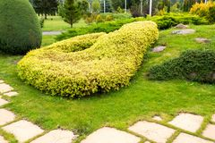 Landscape design with green bushes in the park with a path of tiles. Landscape design with green bushes in the park royalty free stock photos