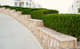Landscape design. Nicely trimmed bushes at the front yard. Empty. Street and great quiet neighborhood Stock Images