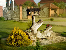 Landscape design patio. Trough for birds on driftwood outdoors Stock Image