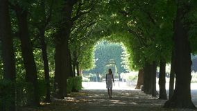 Landscape design. Walking under arch of trees stock video