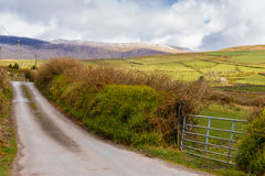 Landscape. Dingle Peninsula. Ireland. A tipical landscape. Dingle  Peninsula. Ireland Royalty Free Stock Image