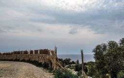Landscape with Dingli cliffs and majestic views of the Mediterranean sea and the lush countryside, Malta stock photography