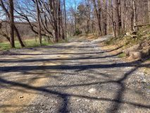 Landscape of dirt road going into the forest. And woods Royalty Free Stock Image