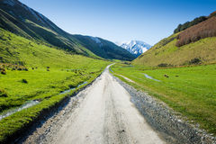 Landscape with dirt road in the mountains , New Zealand Stock Photos