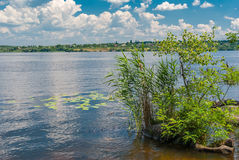 Landscape on a  Dnepr river at June in central Ukraine Stock Image