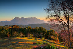Landscape  Doi Luang Chiang Dao. Thailand Royalty Free Stock Photography